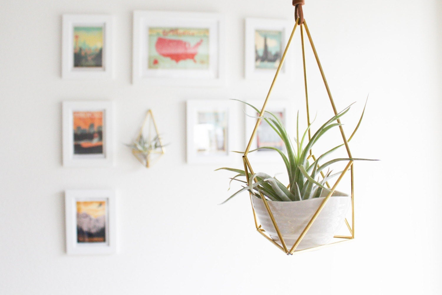 The Planter Hanging Brass Air Plant Holder With Cup Modern