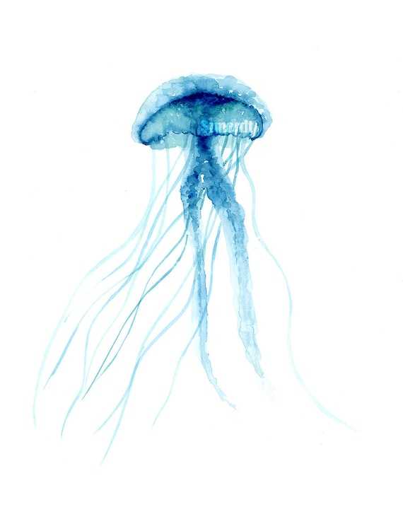 items similar to jellyfish ocean home decor nautical wall jellyfish home decor submited images
