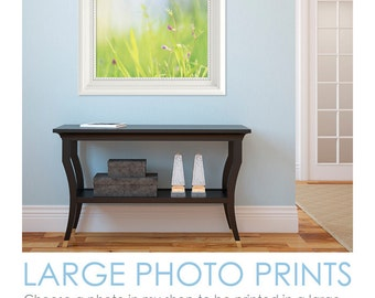 "Large Photo Print - 16x24"", 20x20"", 20x30"", 24x24"", 24x30"", 24x36"" flower photography, botanical, nature, wall art"