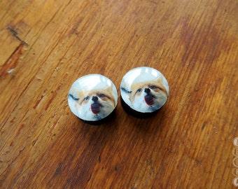 """Pair gauges Cute fox wooden ear plugs,4,5,6,8,10,11,12,14,16,18,20,22,25-60mm;6g,4g,2g,0g,00g;1/4,5/16,3/8,7/16,1/2,9/16,5/8,3/4,7/8,1 1/4"""""""