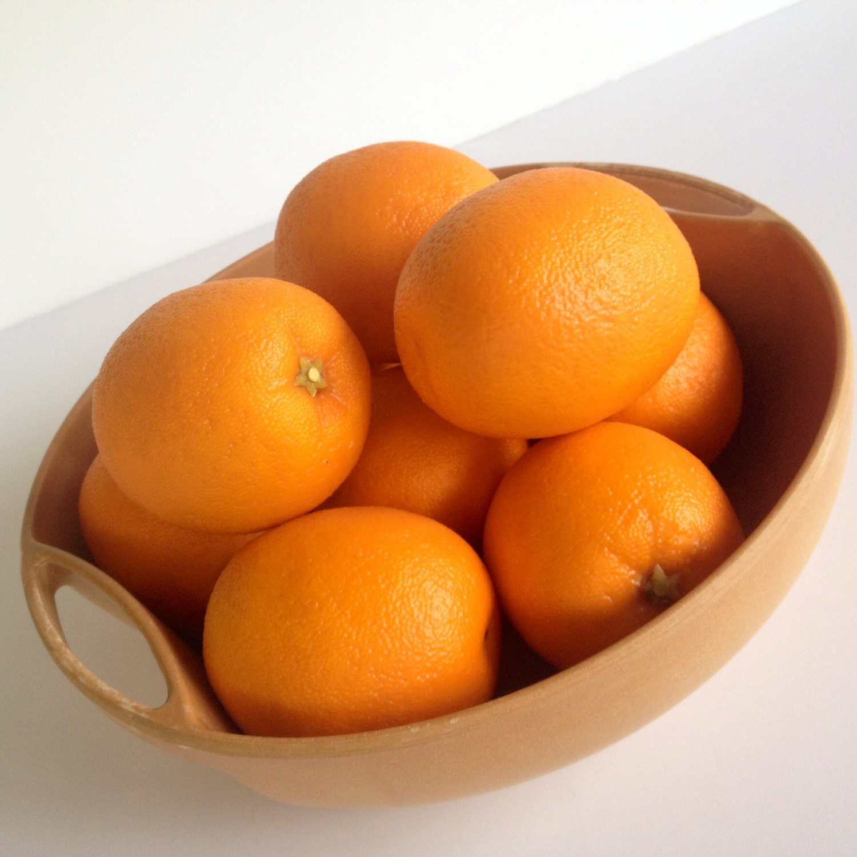 Danish Modern Bowl Fruit Bowl Serving Bowl Minimalist Mid