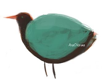 Oiseau brun, vert, orange, dessin numérique original, impression de qualité, type giclée. Cadre non-inclus.