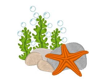Starfish Seaweed Rocks and Bubbles
