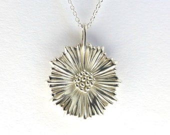 Coral Leptocyathus pendant - Marine Biology - Hexacoralla - Science Jewelry in bronze, brass, silver & gold-plated steel