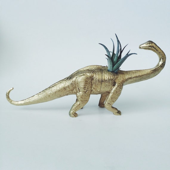 Large Gold Brontosaurus Dinosaur Planter With Air Plant