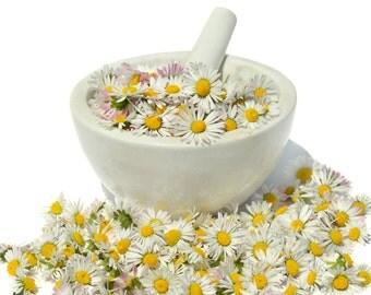 10 gr. dried flowers Bellis Perennis, Wildflower Daisy Herbs Tea Wild Crafted Organic Natural Health