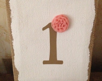 Baby's 1st birthday sign - girl - photo prop