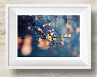 Blaue Stunde - Fine Art Print Photography, Nature, Abstract, Bokeh - Different sizes avariable!