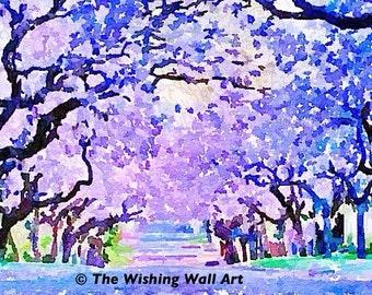 Violet Purple Jacaranda Tree Original Digital Print. New Wall Art.