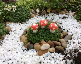 The miniature toadstools