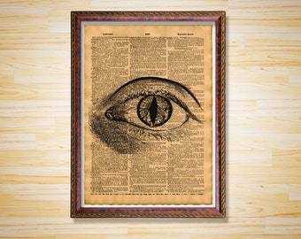 Medical dictionary page Anatomy print Human cat eye poster