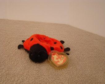 "Ty Beanie Baby Lady Bug ""Lucky"""