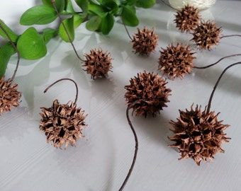 Witch Balls - Magickal Plants