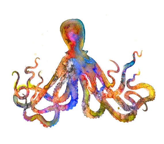 Watercolor art print colorful octopus by watercolorflower for Colorful octopus painting