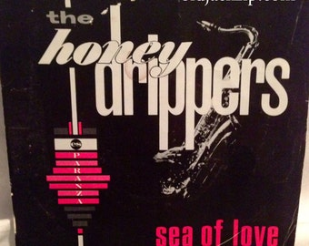 The HONEYDRIPPERS Robert Palmer Sea Of Love / Rockin' At Midnight 45 Picture Sleeve Led Zeppelin
