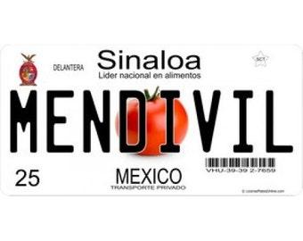 Mexico Sinaloa Photo License Plate - LPO909