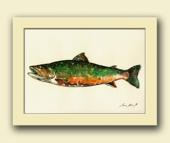 Brook trout fish fish watercolor animal decor trout river for Fly fishing decor
