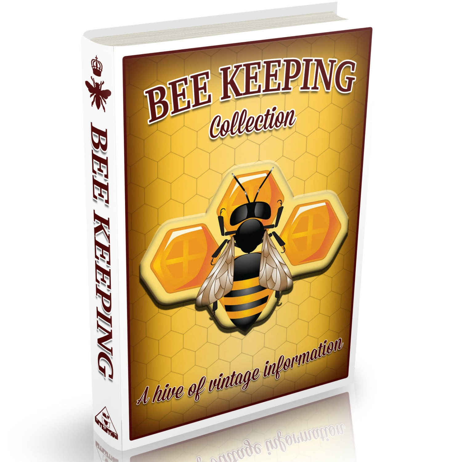 Bee Keeper's Guide to the Management of Bees in Moveable Comb Hives