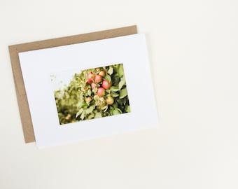 Apple Orchard - card