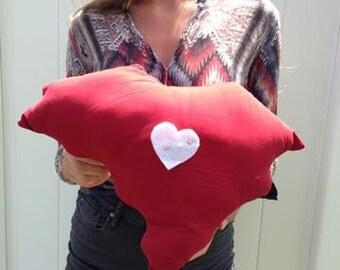 South Carolina Pillow
