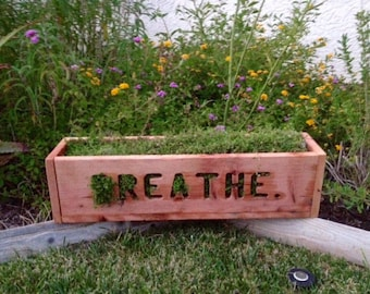 """Living Sign """"Breathe"""" by The Green Hen Company"""