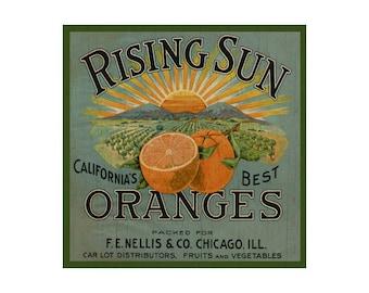 Fruit Plaque- Orange Sign