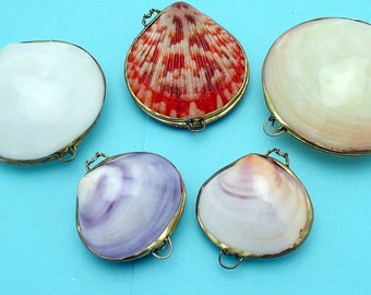 Polished Shell Coin purses, pill box, trinket holder, wedding ring holder