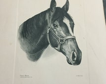 Proud Clarion Kentucky Derby Winner Churchill Downs 1967 Talio-Crome Lithograph