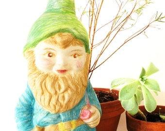 Indoor Garden Gnome