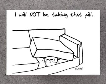 Angry Cat Will Not Take His Pill - Funny Get Well Soon Card for Cat Lovers