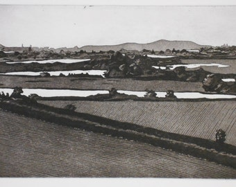 Landscape etching aquatint, original print Skagit Valley
