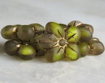 Freesia Czech Glass Bead 14mm Matte Flower Blossom : 6 pc Yellow Green Flower Bead