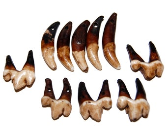 Vintage Real Animal Teeth - Drilled Tooth Beads