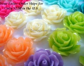 40 Rose Cabochon Flower Assortment Opaque 18mm - No Holes - 40 pc - CA2004-AS40-AG