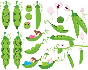 Peas in a pod clip art sweet peas clipart baby babies green vines flowers sweetpeas digital for scrapbooking invites commercial use