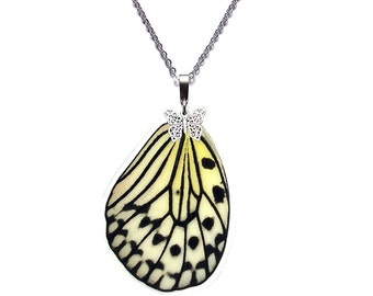 Real Butterfly Wing Necklace (Idea leuconoe Hindwing - N013)