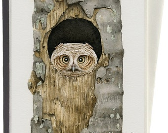 Peek a Boo Owl Greeting Card by Tracy Lizotte