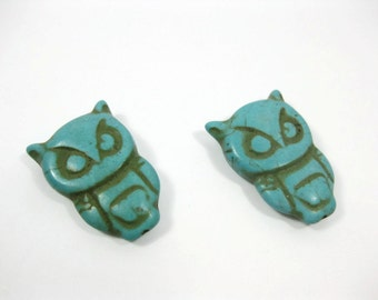 30mm Turquoise Howlite Owl Beads Set of 2
