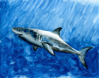 SHARK Original watercolor painting 10X8inch