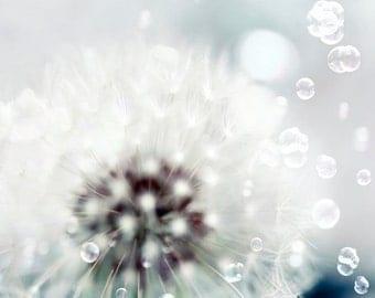 Dandelion Print, White, Flower Photography, Bubbles, Dreamy, Wall Art, Dandelion Art, Baby Nursery Decor