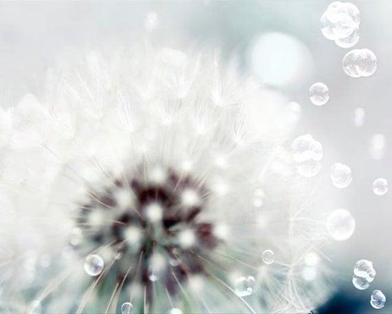Dandelion Print, White, Blue, Baby Neutral, Nursery Decor, Flower Photography, Dandelion Seeds, Bubbles