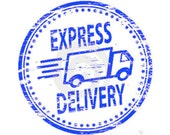 Express Delivery Service 10 Business days to USA ONLY