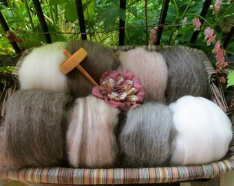 Natural Combed Wool Top Collection Sampler Spinners and Felters YOU CHOOSE 2 Pounds of Fiber!