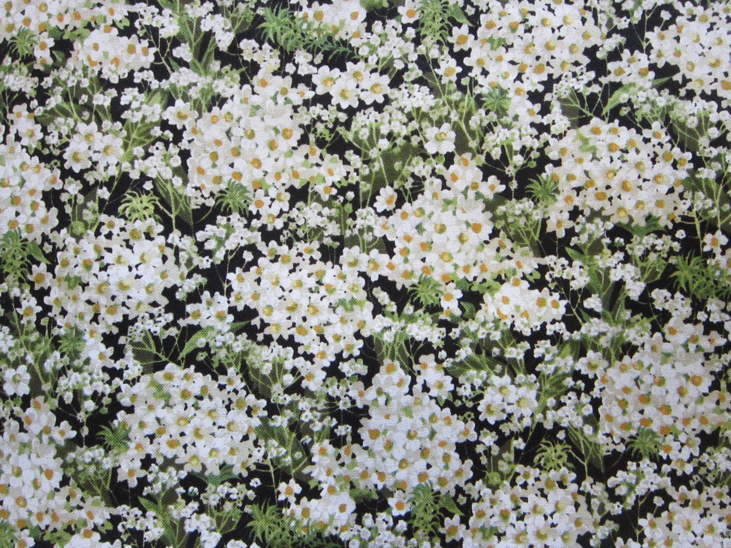 fabric by the yard baby u0027s breath by michael miller 44 inches