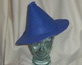 Blue Witch Hat- Fleur