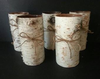 Rustic Birch Bark Vases (5)