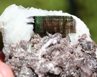 Blue, Green and Pink Tourmaline Crystal Cluster Specimen