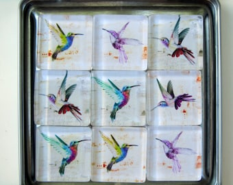 Hummingbird Refrigerator Magnets, Hummingbird Magnets, Hummingbirds, Hummingbird Fridge Magnets