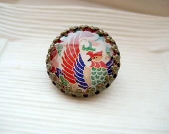 Round glass dome brass framed bird brooch pin - Jewel Phoenix