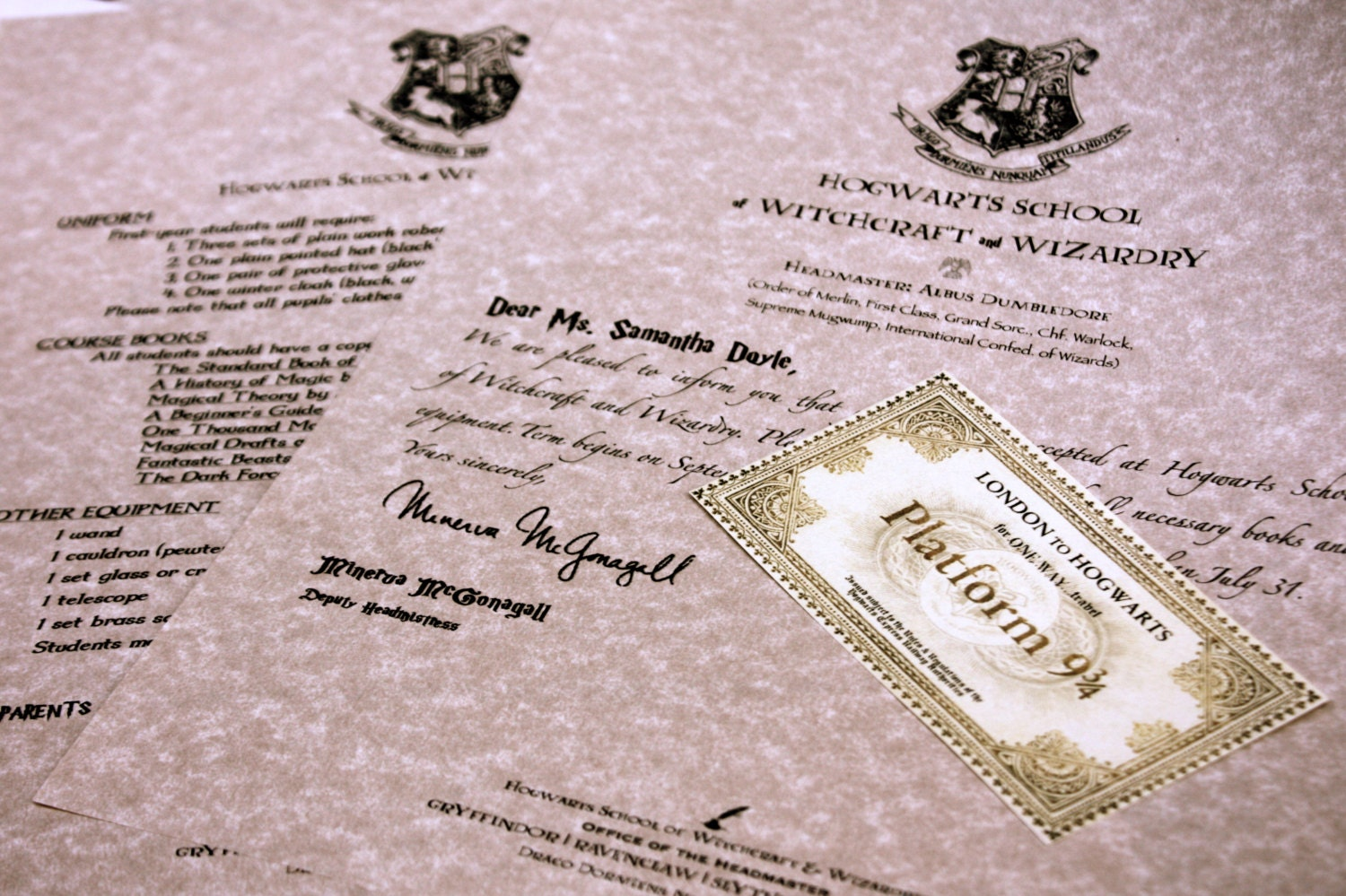 Lost Hogwarts Acceptance Letter Owl Lost In The Mail